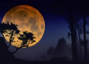 «Рассеянная» Луна