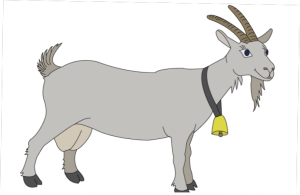 Кто такая коза